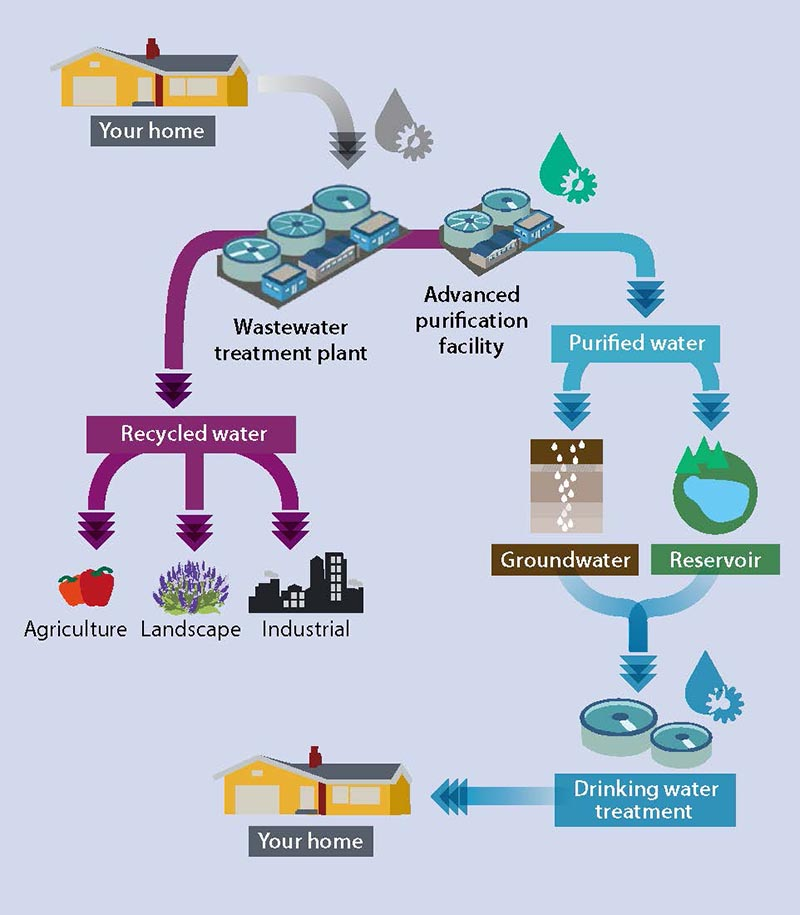 an essay on water and the recycle process Water recycling treatment process how does water recycling work the water recycling process utilizes very basic physical, biological and chemical principles to remove contaminants from water.