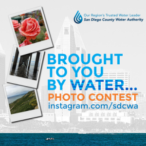 instagram-cover-photo-contest-v3_0_1.png